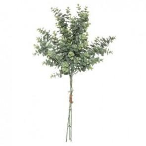 Ramo de eucalipto H 64